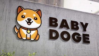 Baby Doge Coin Nedir, Nasıl ve Nereden Alınır?