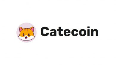 CateCoin (CATE) Nedir, Nasıl ve Nereden Alınır?