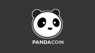 Pandacoin (PND Coin) Nedir, Nasıl Alınır?