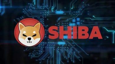 Shiba Inu (SHIB) Ne Kadar? Kaç TL, Dolar, Euro, Grafik